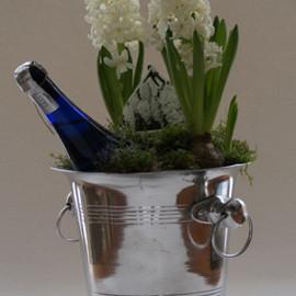 Champagnekoeler gevuld met hyacinten op pot