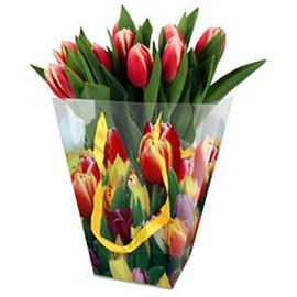Tulpen verpakt in tulpentas